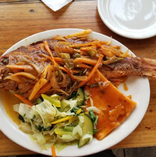 Brown Stew Snapper on plate